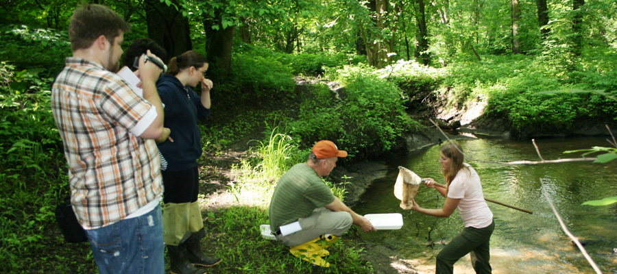 Environmental Studies certificate in Connecticut