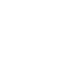lineart drawing of money